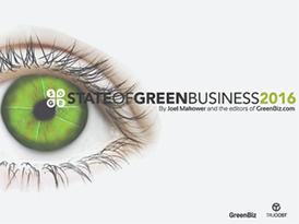 SSP-jpeg-GreenBiz