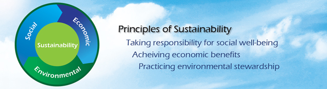 Principles of Sustainability graphic image