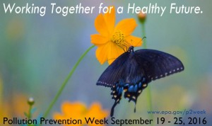 p2 week 2016 poster working together for a healthy future
